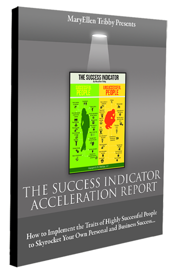 MaryEllen Tribby's The Success Indicator Acceleration Report